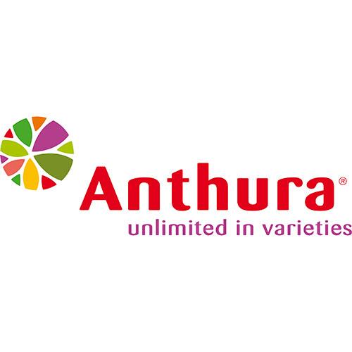 anthura logo